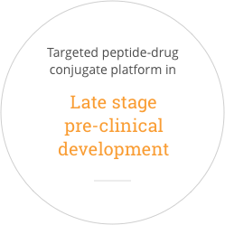 Targeted Peptide